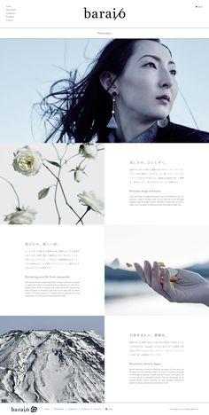 Website Layout, Web Layout, Web Ui Design, Graphic Design, Pamphlet Design, Photoshop, Landing, Illustration, Editorial