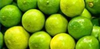 How to Get Lime Trees to Flower | eHow
