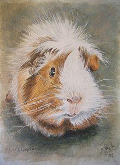 Fuzzie Lumpkins, guinea pig! Watercolour.