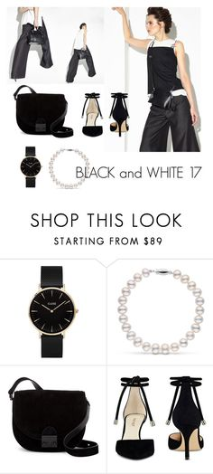 BLACK and WHITE by slavalazarev-conceptatelier