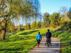 Community Health can be improved by regular walking exercise.   Location : Darebin Creek, Bundoora, Melbourne, Victoria    Photographer: M Goh