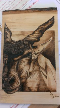 """Ibex"" woodburning, wood burning, pyrography"
