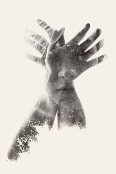 "Saatchi Art Artist Christoffer Relander; Photography, ""Butterfly"" #art"