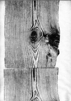 Wood prints by Martha Richter
