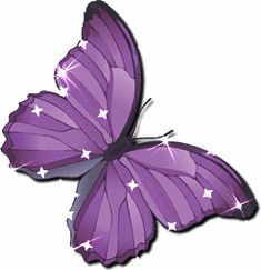 Animated Butterfly Clip Art | Glitter Graphics: the community for graphics enthusiasts!