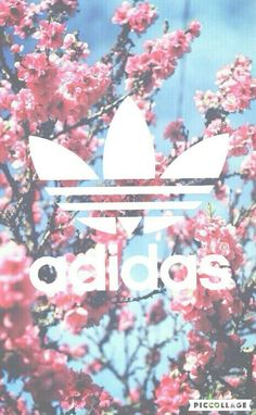 Image de adidas, flowers, and wallpaper