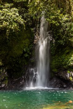 Malabsay Falls, Mt. Isarog National Park, Camarines Sur Province, Philippines. See more here: http://www.tenacityinpursuit.com/april13.php#april12