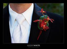grooms-20tie-20white