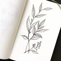 Little sketch of friday. I'm waiting for the week-end. Vine Tattoos, Flower Tattoos, Sleeve Tattoos, Plant Drawing, Vine Drawing, Botanisches Tattoo, Floral Doodle, Flower Sketches, Botanical Tattoo