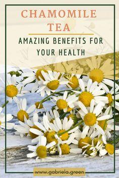 Chamomile Tea - Amazing Benefits for Your Health- www.gabriela.green