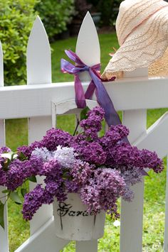 Lilacs by Georgianna Lane. Cute idea for a picket fence.