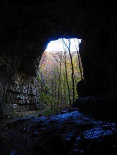 Falkensteiner Cave, Cave, Caves Portal, Cave's Profile