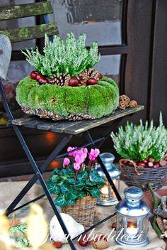 great decoration for the entrance area - Dekoration Herbst - Blumen Deco Floral, Arte Floral, Flower Pots, Flowers, Funky Junk, Garden Inspiration, Fall Decor, Flower Arrangements, Entrance