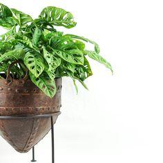 Rust Pinstripe Planter