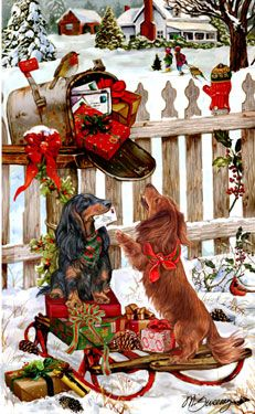Long Hair Dachshund Christmas Delivery