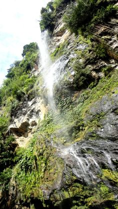 Maracas Waterfall, Trinidad.