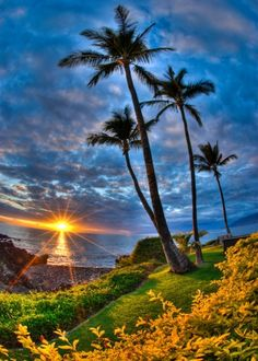 Sunset on an island of Hawaii, USA.  Absolutely Stunning !!! Makes me consider hopping on a flight to go there...