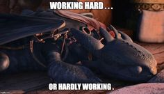WORKING HARD . . . OR HARDLY WORKING .   image tagged in how to train your dragon,toothless   made w/ Imgflip meme maker