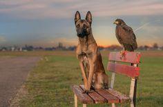 """Ingo and friends - Ingo und Else - pictures   """"Vertrauen ist Mut und Treue ist Kraft ..."""""""