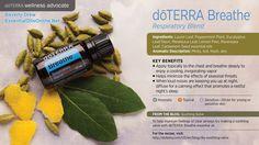 doTERRA Breathe Blend - doTERRA Breathe Ingredients