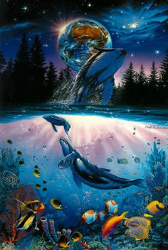 Christian Lassen Whale Star  1993. This is true beauty. I wish one day we will save our oceans and live as one.
