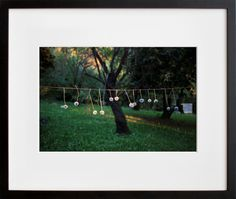 Dandelion Clothesline, Santiago, Chile, by  William Lamson - 20x200.com