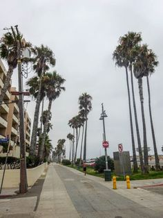 Los Angeles i Las Vegas - co warto zobaczyć? Venice Beach, Santa Monica, Palazzo, Beverly Hills, Las Vegas, San Francisco, Sidewalk, Usa, Last Vegas