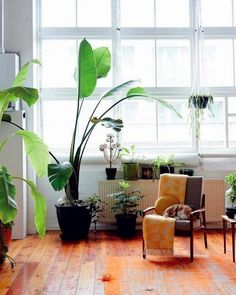 Tropical Home :: Paradise Style :: Living Space :: Dream Home :: Interior + Outdoor :: Decor + Design :: Free your Wild :: See more Tropical Island Home Style Inspiration House Design, House Styles, Home And Living, Beautiful Homes, Home, Indoor, Home Deco, Interior And Exterior, Home And Garden