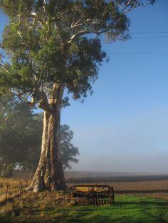 Adelaide Hills Australia