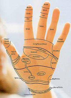 Reflexology Charts: Hand, Foot & Ear Reflexology Chart Tips! Reflexology Points, Reflexology Massage, Acupressure Points, Lymph Massage, Acupuncture Points, Reiki, Technique Massage, Health Tips, Health And Wellness