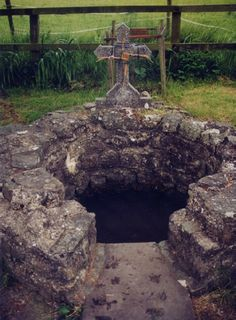 The holy well of St. Brigid.  County Kildare, Ireland