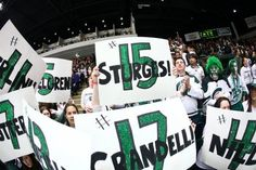 These posters made for senior night at Munn Ice Arena look awesome. Go green!