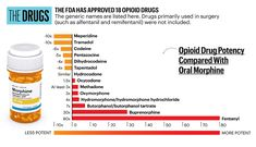 Prescription Opioids: Pain Medication Information Best Natural Sleep Aid, Natural Sleep Remedies, Sleeping Pills, Addiction Recovery, Chronic Pain, Drugs, Health And Wellness, Medical, Chemical Suppliers