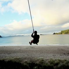 New Zealand, Beach, Places, Travel, Outdoor, Northern Island, Round Trip, Travel Tips, Voyage