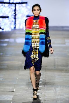 trend:  color blocking/colorful fur  Peter Pilotto