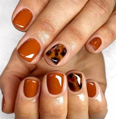 Staple autumn nails🧶 short torts🐢 using Fall, Glass Yellow, Chocolate + Jet Black. Prepped using Staple autumn nails🧶 short torts🐢 using Fall, Glass Yellow, Chocolate + Jet Black. Fancy Nails, Cute Nails, Pretty Nails, Cute Fall Nails, Essie, Hair And Nails, My Nails, Fingernails Painted, Oval Nails