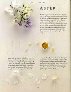 sugar flowers -ASTER - Álbumes web de Picasa