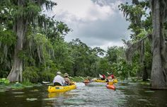 Ouiska Chitto in Mittie, LA north of lake Charles, known as the capital of canoeing