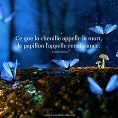 Ce que la chenille appelle la mort, la papillon l'appelle renaissance. Violette Lebon | RENAÎTRE Le Monde s'Eveille Grâce à Nous Tous ♥