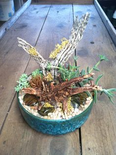 High style succulent scape, cholla, river rock and moss.  Www.palmspringsflorist.net