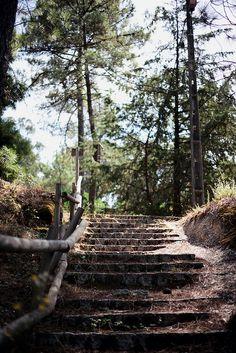 Monte S. Lúzia | Viseu