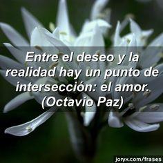 Entre el deseo y la realidad hay un punto de intersección: el amor. (Octavio Paz)