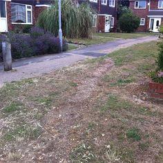 #CllrDarrenFower #Peterborough #Council #Cambridgeshire #Community #Activism #LibDems #LiberalDemocrats #Politics #Gunthorpe #Werrington #PeterboroughCC