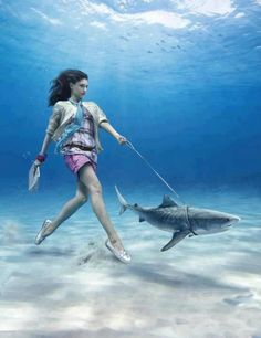 Would love to try an underwater shoot. Love the idea of this picture, looks like an underwater housewife walking her pet shark Under The Water, Under The Sea, Underwater Photos, Underwater Photography, Photomontage, Pet Shark, Shark Fish, Shark Bait, Cool Pictures