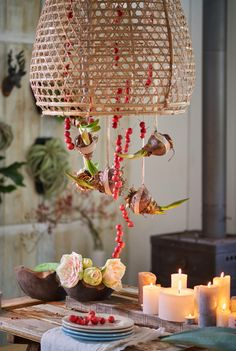 Amaryllis bulbs hanging from a lamp make a great festive display! #Christmas