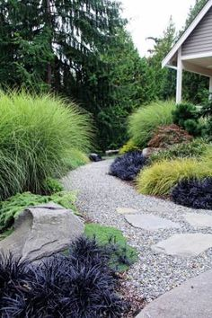 Landscaping Ideas for Your Home Suhr-Brown, Bainbridge Island, WA - contemporary - landscape - seattle - Bliss Garden Design Garden Design, Xeriscape, Grasses Landscaping, Modern Landscaping, Ornamental Grass Landscape, Modern Garden, Modern Garden Design, Backyard, Contemporary Landscape