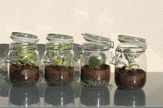 Diy : Ma plante en pot – Béatrice&Déchets Pots, Cactus Pot, Pot Plante, Small Gifts, Mason Jars, Diy, Voici, Surplus, Terrariums