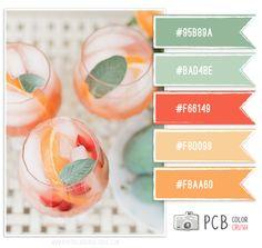 Color Crush Palette · 1.13.2013 #colorcrush