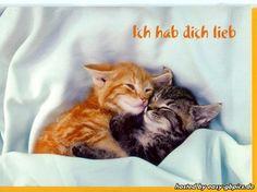 Hab Dich Lieb