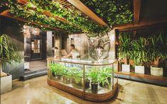 Onas Hostel & Suites is the 5 Star Hostel in Córdoba Argentina. Full Review 2018. BONUS: 15€ Discount.